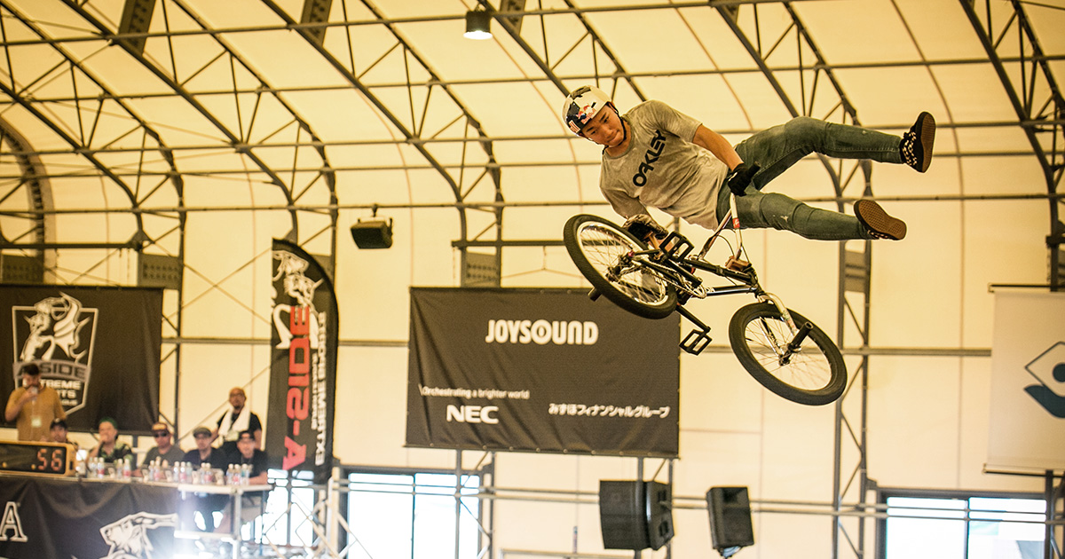 BMX Freestyle Park:THE FINAL